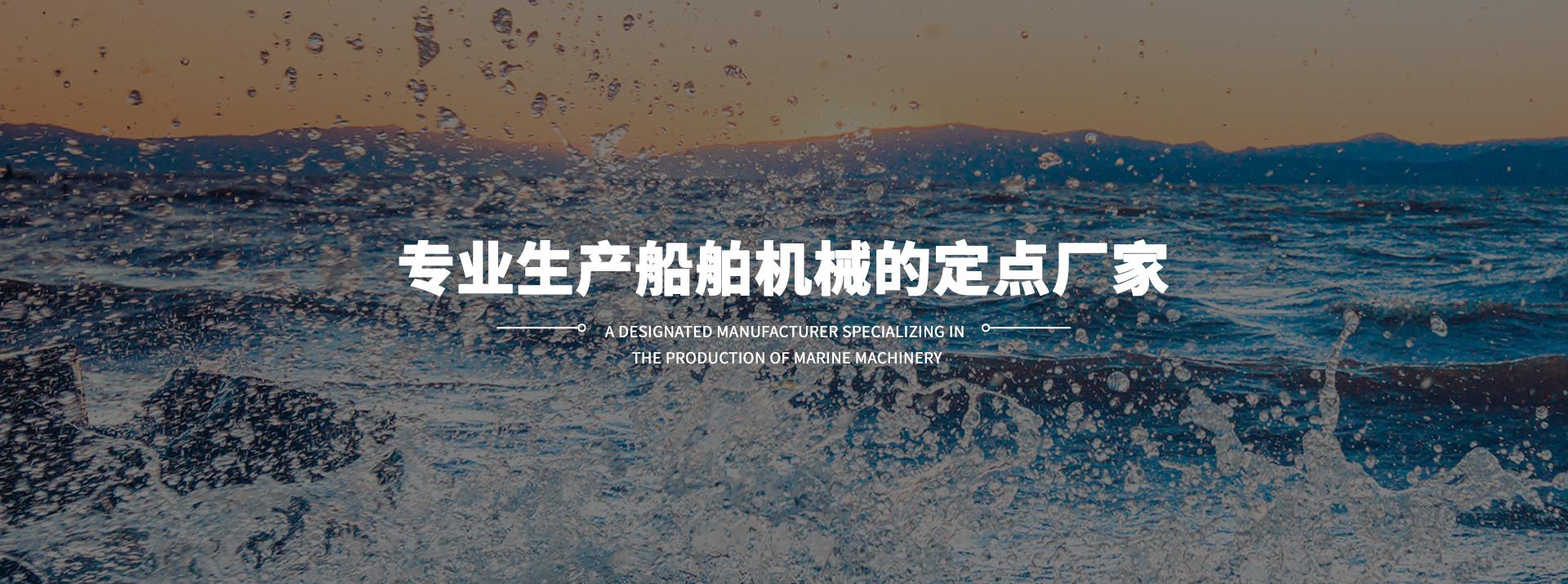 船用海水泵