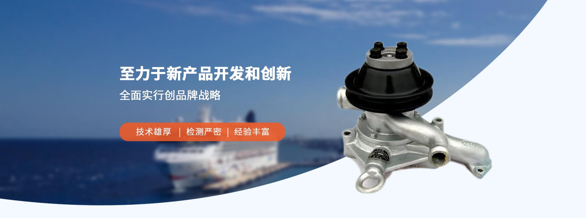 柴油机冷却海水泵